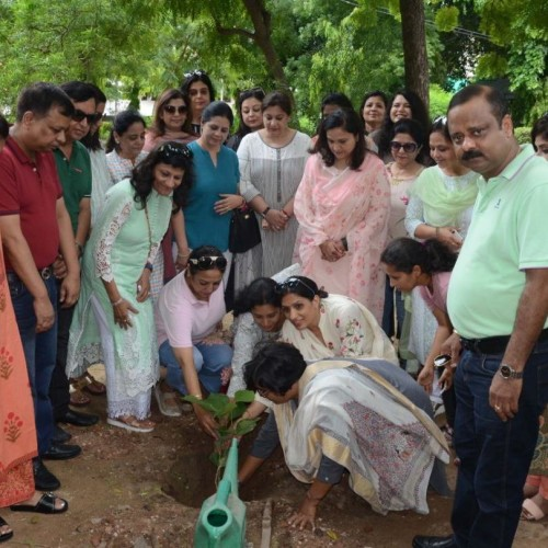 Tree Plantation - Metrochem